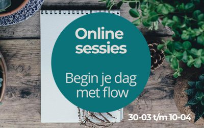 Online sessies flow
